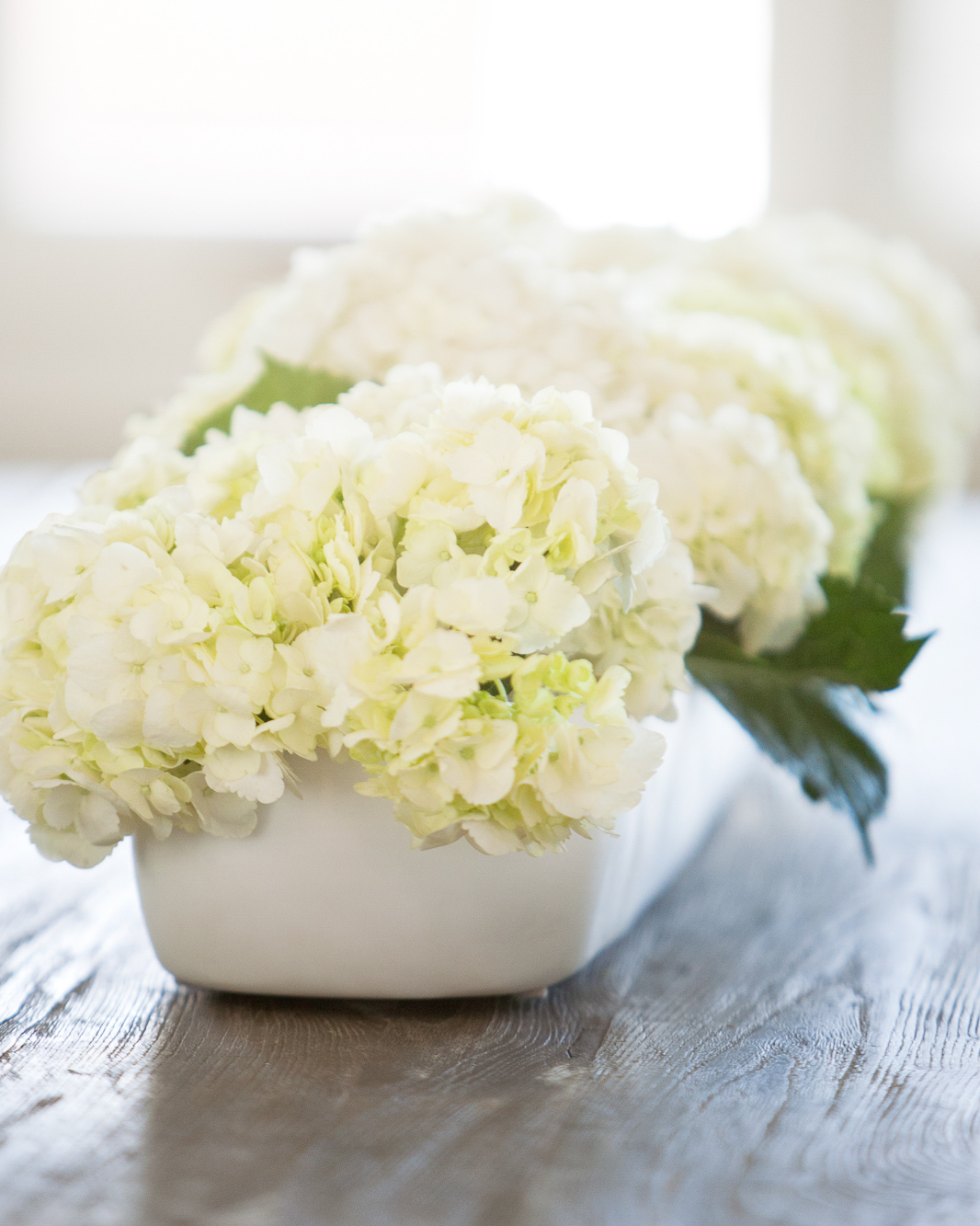 White hydrangeas in a low, long, white, ceramic ceramic bowl on a dining table