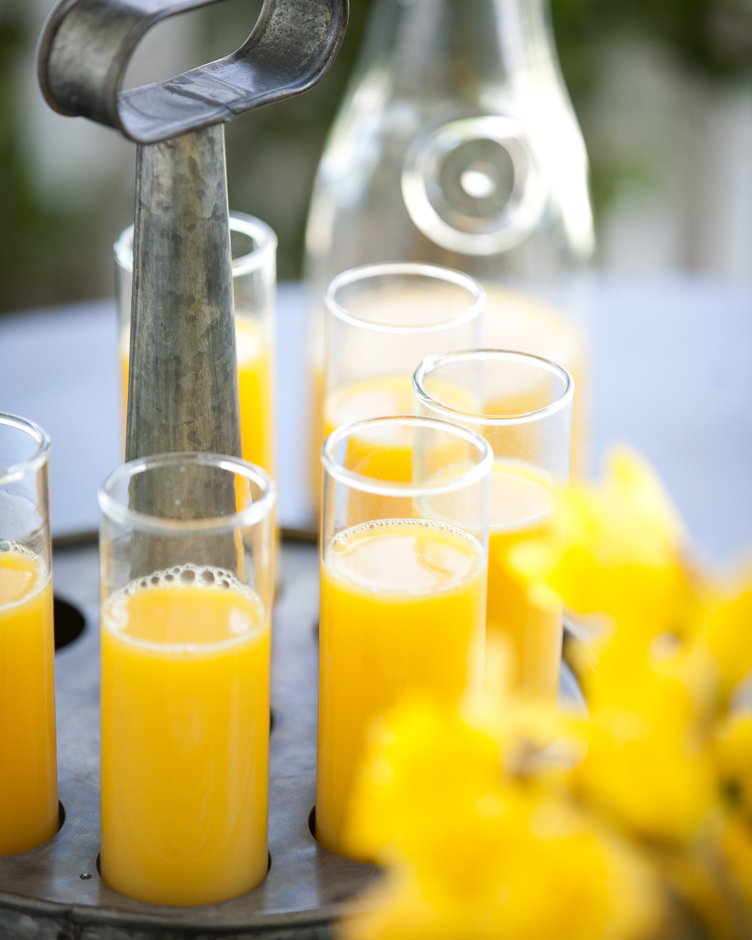 Six glasses of orange juice in a rustic galvanized serving caddy. Yellow tulips are in the foreground and a carafe of oj in the back.